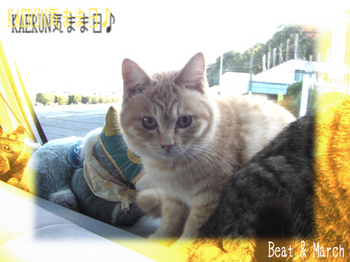 みかん&すいか 病院 2009.jpg